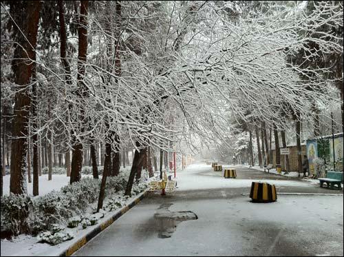 http://img.aftab.cc/news/89/savehsara_saveh_snow_1389.jpg