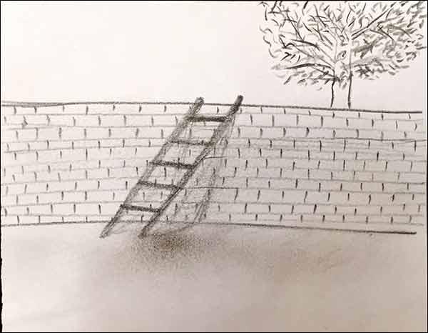 http://img.aftab.cc/news/94/ladder.jpg