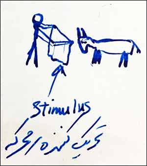 https://img.aftab.cc/news/94/stimulus.jpg