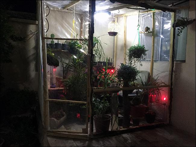 http://img.aftab.cc/news/95/greenhouse.jpg