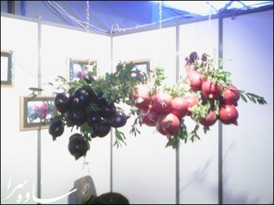 جشنواره انار ساوه - ساوهسرا